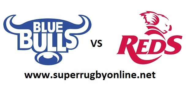 Bulls vs Queensland Reds