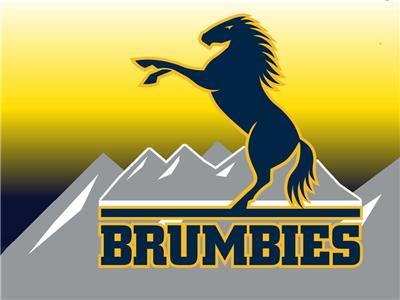 Live Brumbies