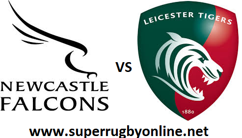 Newcastle Falcons vs Leicester Tigers
