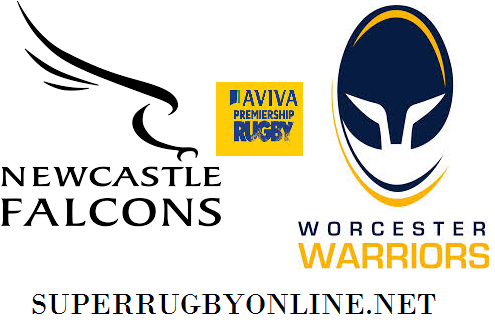 Newcastle Falcons vs Worcester Warriors rugby live