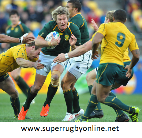 Rugby Australia vs South Africa Live Stream