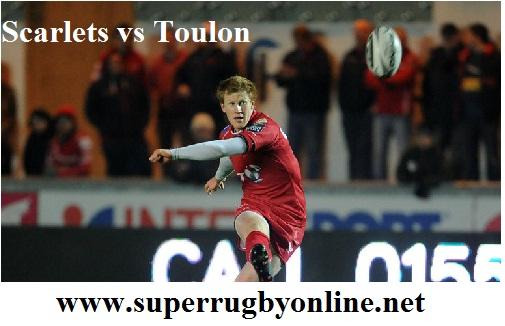 Scarlets vs Toulon live