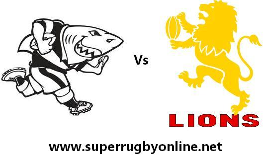 Sharks vs Lions live streaming
