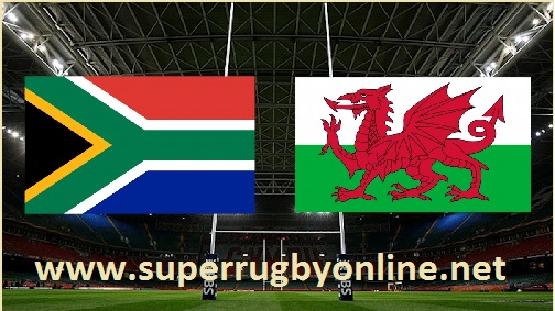 South Africa vs Wales streaming live